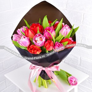 The ideal solution - a bouquet of pink and red tulips